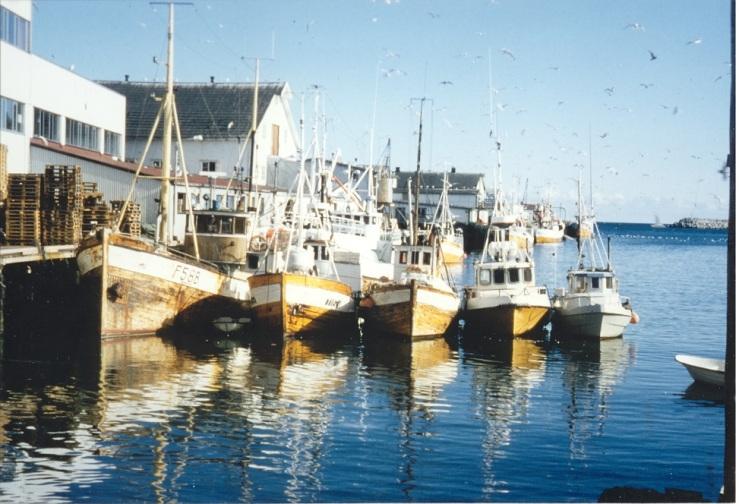 Da trebåten fortsatt dominerte, Berlevåg 1986.