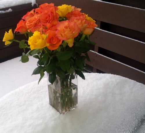 En varmere vinter? Foto: Hilde Kat. Eriksen
