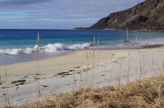 Strand og hav, Bøvær. Foto: Hilde Kat. Eriksen