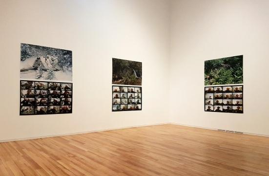 Noen av bildene på Marlene Creates fotoutstilling ved Fogo Island Gallery.