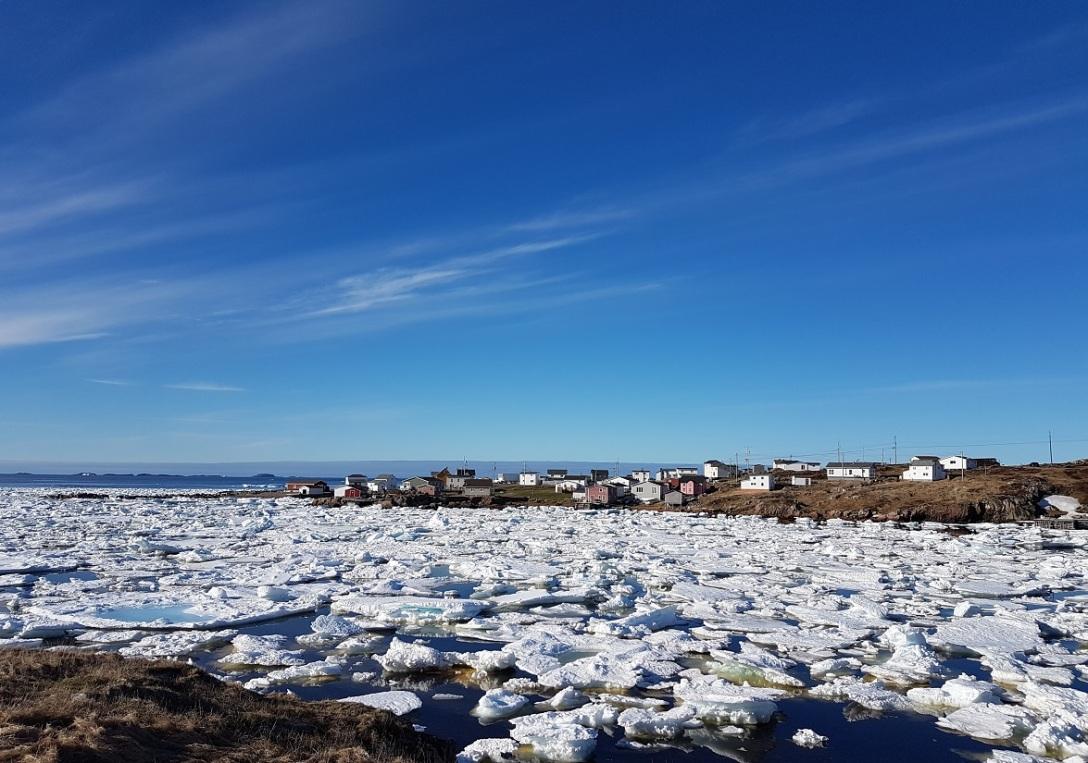 Vind og strøm fører isen fra Grønland inn i buktene på Fogo, Newfoundland, Canada. Foto: Hilde Kat. Eriksen